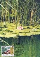 HELVETIA SARGANS   ETANG DE LA VALLEE DU RHIN MAXIMUM  POST CARD   (GENN2001196) - Autres