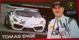 Tomas Enge - Automobile - F1