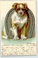 52701543 - Hufeisen - Hunde
