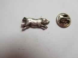 Beau Pin's En Relief , Cochon , Porc , Pig - Animaux