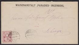 NR. 54 / 1882 / WEISSES PAPIER / SUPER UMSCHLAG VON BRUNNEN NACH SCHWYZ - 1882-1906 Wappen, Stehende Helvetia & UPU