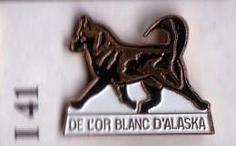 I41 Pin's Chien De Traîneau Husky OR BLANC ALASKA Sled Dog Achat Immédiat - Animaux