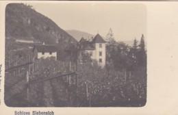 4811205Schloss Siebeneich. (Verlag B. Peter, Meran 1904.) - Bolzano (Bozen)