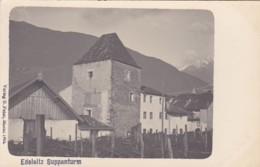 4811212Edelsitz Suppanturm. (Verlag B. Peter, Meran 1904.) - Italie
