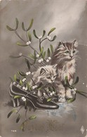 Chat Chats Chaton Cpa Carte Ecrite En 1914 - Katten