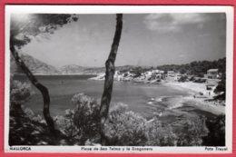 MALLORCA - Playa De San Telmo Y La Dragonera - Mallorca