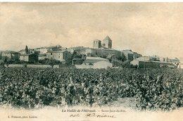 SAINT JEAN DE FOS Dans La Vallée De L'Hérault La Vigne Puis Le Village - France