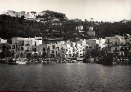 Grande Photo Originale Maghreb, Tunisie Vers 1940/50 - Petit Village Au Bled ( بلاد ) & Son Port à Identifier - Plaatsen