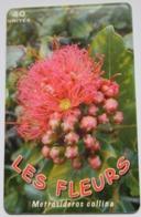 PF147  -  TELECARTE DE POLYNESIE - Polinesia Francese