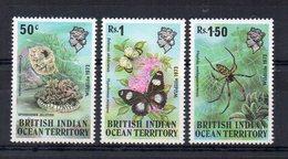 TERRITOIRE BRITANNIQUE DE L'OCEAN INDIEN - BRITISH INDIAN OCEAN TERRITORY - 1973 - FAUNE - FAUNA - - Territoire Britannique De L'Océan Indien