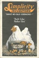 Matériel D'élevage, Brochure: Couveuse 150 Oeufs - Simplicity Incubators, Built Like Mother Hen - Alte Papiere