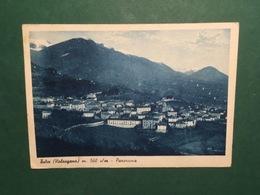 Cartolina Telve - Valsugana - Panorama - 1948 - Trento