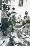 568D.......ALGERIE.. Photo - Altre Guerre