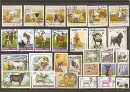 Chèvres - Petit Lot De 29° - Caprins - Boucs - Chevreaux - Bouquetins - 2 Séries Complètes - Uganda 2014 - Guinée 2010 - Vrac (max 999 Timbres)