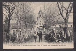 66436/ CANNES, Ile Saint-Honorat, Abbaye De Lérins, Allée Et Entrée Du Monastère - Cannes