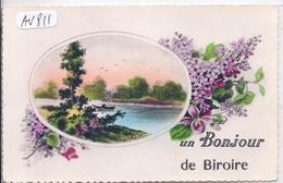 ILE-D OLERON- LA BIROIRE- UN BONJOUR DE BIROIRE - Ile D'Oléron