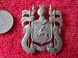 Insigne 2-4 Lanciers Belge - Militari