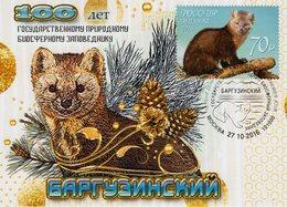 Russia - 2016 - Centenary Of Barguzin Natural Reserve - Maximum Card - Tarjetas Máxima