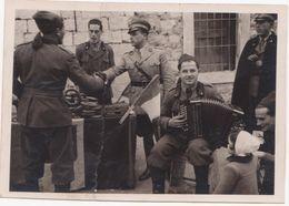 M353 CARTOLINA DA FOTO MILITARI IN DIVISA MUSICISTA FISARMONICA - War, Military
