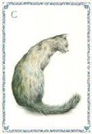 Chat Alphabet Lettre C Illustration Illustrateur Armelle Boy - Katten