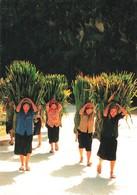 Vietnam Viet Nam Retour Au Village + Timbre 2 Timbres - Viêt-Nam