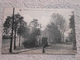 Cpa Tervueren Tervuren, Coin Avenue Tram - Tervuren
