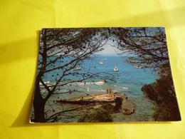 Dep 83 Ile Du Levant  Perspertive Sur L'ilot Naturiste  ' Ecrite + Timbre ) - Francia