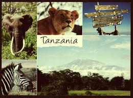 Tanzania / Tansania  -  Felix Sendet Grüße  -  Mehrbild-Ansichtskarte Ca. 2010   (groß) - Tansania