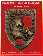 SUPER PIN'S MILITARIA-SANGLIER : 30e De REGIMENT De DRAGONS En ZAMAC Cloisonné 3D Cuivré Format 2,8X2cm - Militaria