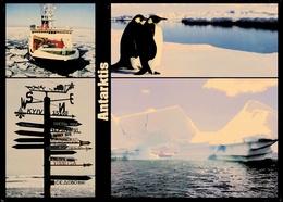 Antarktis  -  Felix Sendet Grüße  -  Mehrbild-Ansichtskarte Ca. 2010   (groß) - Sonstige