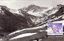 LIECHTENSTEIN VADUZ ALPEN 1989  MAXIMUM POST CARD   (GENN201266) - Geografia