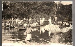 27675 - Huitres Lagune De MAYUMBA - French Congo - Other
