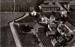 ! Luftbild S/w Ansichtskarte Aus Deidesheim, Winzergenossenschaft, Wein, Wine, Vin - Deidesheim