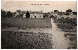 CPA 45 - ORLEANS (Loiret) - Pépinières Du Lièvre-d'Or. Vue Partielle Des Cultures - Orleans