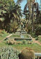 Marrakech - Jardin - Marrakech