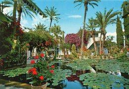 Marrakech - Les Jardins Exotiques - Majorelle - Marrakech