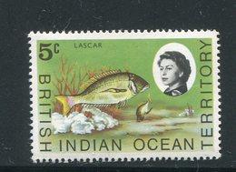 OCEAN INDIEN- Y&T N°16- Neuf Sans Charnière ** (poissons) - Territoire Britannique De L'Océan Indien