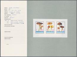 Äquatorialguinea: 1990 Circa. Thirteen Original Sketches And Proofs From The Spanish Royal Mint, Som - Äquatorial-Guinea