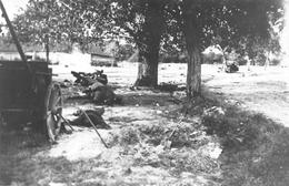 Tournai - Morts, Reproduction D'une Photo De Guerre - 3/09/44 En Bas De L'allée Des Maronniers - Tournai