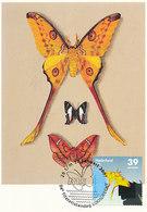 D38939 CARTE MAXIMUM CARD TRIPLE 2007 NETHERLANDS - TROPICAL BUTTERFLY - RARE POSTMARK CP ORIGINAL - Vlinders
