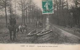 CP- TRES RARE - Forêt De Sénart - Route Allant Au Chêne D'Antin - Débardage Avec Chevaux - Voyagé - Other