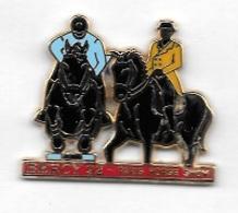 Pin's  Ville, ARTHUS  BERTRAND, Animaux  CHEVAUX, BERCY  92, PARIS  HORSE  SHOW - Animaux