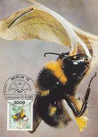 D38958 CARTE MAXIMUM CARD 1984 GERMANY - BUMBLE BEE CP ORIGINAL - Insecten