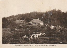 CPA 01 (Ain) LE PAYS DE GEX PITTORESQUE / CHALET DE LA MONTAGNE JURASSIENNE - Gex
