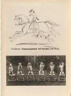 CPA THEME CIRQUE / TH. BAUR / DRESSEUR DES CHIENS ET CHEVAUX - Cirque