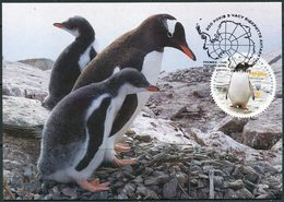 """Ukraine 2020. #1807 MNH/Luxe - """"200 Years Of  Discovery Of Antarctic."""" Maxicard. (B05) - Pingouins & Manchots"""