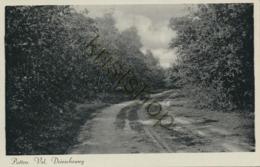 Putten - Vel. Driescheweg  [EK-137 - Putten