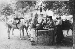 Carte-photo à Identifier - Chevaux Et Gardians Au Puits En Camargue? Ou Cow-boys Au Far-West? - To Identify
