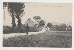 AC665 - ILE D'ARZ - Panorama - Ile D'Arz