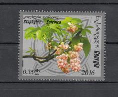 Georgia Georgien 2016 Mi. Flora Stapylea-Colchica - Georgia